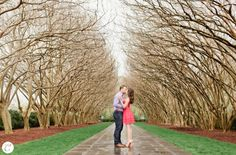 Chase and Hillary : Dallas Arboretum Engagement Session • Central ...