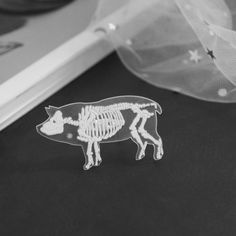 Creepy or cute? You decide! This pig skeleton pin is made of acrylic and zinc alloy. It is cm x cm. Baby Harness, New Nail Art, Fall 2018, Skeleton, Creepy, Stuff To Buy, Brooches, Medicine, Jewelry