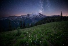 Milky Way galaxy rising over Mt. Rainier [1600x1083] [OC]