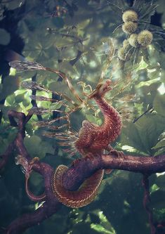 ~Its beautiful long tasseled tail wrapped around the branch as it lifted its head to the sun that broke through the leaves. As the sun heated the creature up he changed color so he could go show the others were light was~ ~Fantasy-Dreams~
