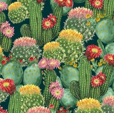 Cacti Collection Fabric - Tropical Cactus Flowers By Svetlana Prikhnenko - Watercolor Botanical Cotton Fabric By The Yard With Spoonflower
