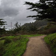 Trail at Lands End. Would be kind cool to start off the trip walking around here maybe.