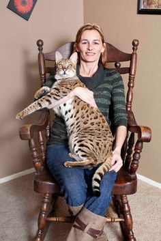 tallest cat-ever. 48.3 centimeters tall. i thought my timmy was big...