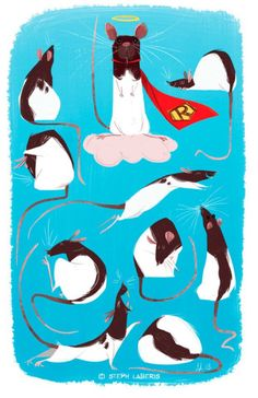 Four Fabulous Rats