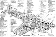 Curtiss P40E Kittyhawk I cutaway