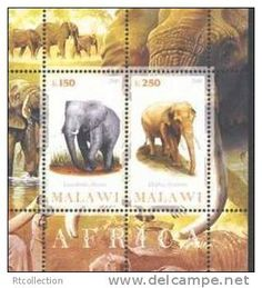Elephant Stamps | Every 15 Minutes we lose another elephant to poaching for…