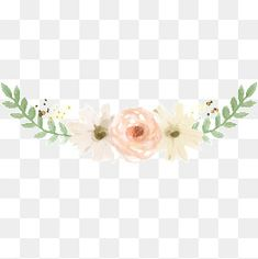 Flower plants PNG and Clipart Free Watercolor Flowers, Watercolor Flower Background, Watercolor Plants, Floral Watercolor, Planting Flowers, Flower Plants, Flower Png Images, Hand Embroidery Patterns Flowers, Transparent Flowers