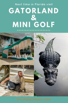 Looking for a day in Orlando that won't break the bank. Visit Gatorland and Congo River Mini Gator Golf in Orlando. A family fun day! Rome Travel, Us Travel, Family Travel, Places To Travel, Travel Destinations, Florida Vacation, Vacation Trips, Florida Trips, Florida Golf
