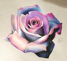 pencil drawing ideas ORIGINAL Colorful Flower Drawing - Blue and Pink - Wall Art - Colorful Flower - Realistic Flower Drawing, Realistic Drawings, Colorful Drawings, Rose Sketch, Flower Sketches, Flower Drawings, Blue Rose Tattoos, Flower Tattoos, Rosa Tattoos