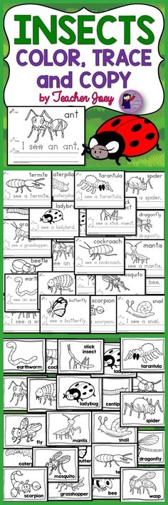 Insects  Insects Color, Trace and Copy Activity Sheets Bugs  US Spelling UK/Australia Spelling Print D'Nealian  This insects unit includes 22 sheets with images of insects to color and; I see... sentence to trace and copy. As a bonus, there are 22 insects pages just for coloring to practice your students' fine-motor/coloring skills.
