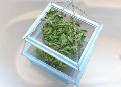Turn old frames into a drying rack for herbs