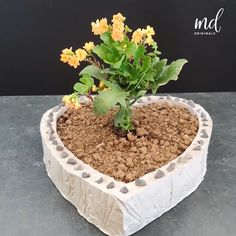 Time to get your creativity going with cement & pretty flower vases!                      By: @metdaanoriginals