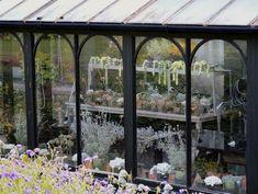Steal This Look Indoor Succulent Garden Shelves ; Gardenista