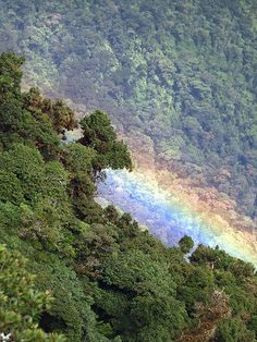 Just a raimbow - a 2500 mts high. Near from continental divide, a few minutes were the difference between rain and sun. COSTA RICA.