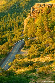 Historic Columbia River Highway National Scenic Area at Rowena Loops, Oregon Solo Travel, Travel Usa, Oregon Coast, Oregon Usa, Oregon Washington, Columbia River Gorge, Oregon Travel, Pacific Northwest, Travel Photography