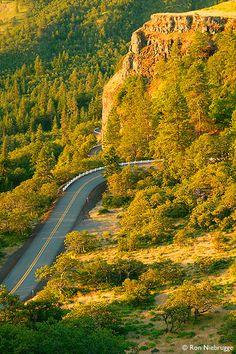 Historic Columbia River Highway National Scenic Area | Rowena Loops, Oregon