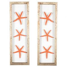 "Bring a touch of the seaside to your home with this charming wall decor, showcasing orange-hued sea star mounted in distressed frames.    Product: Set of 2 framed wall decorConstruction Material: Wood, glass and genuine sea starsColor: Distressed silver frameFeatures: Floating sea starsDimensions: 23.25"" H x 7"" W eachNote: Hanging hardware includedCleaning and Care: Wipe with cloth"