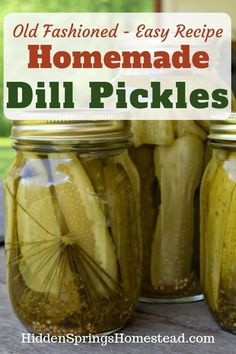 Dill Pickles Recipe How to Can Dill Pickles. A simple and easy recipe for canning old fashioned dill pickles.How to Can Dill Pickles. A simple and easy recipe for canning old fashioned dill pickles. Canning Dill Pickles, Dill Pickle Soup, Dill Pickle Recipe Small Batch, Refrigerator Dill Pickles, Recipe For Canning Pickles, Low Sodium Pickles Recipe, Easy Pickle Recipe, Old Fashioned Dill Pickle Recipe, Dill Pickle Brine Recipe