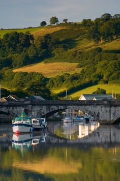Totnes river dawn - Landscape