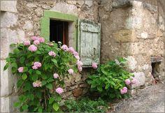... Les fleurs redonnent vie à la petite maison à chaque printemps  ✿
