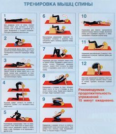 Exercises for training back muscles – Fitness Sport Fitness, Muscle Fitness, Yoga Fitness, Health Fitness, Back Muscle Exercises, Back Muscles, Workout Humor, Physical Therapy, Back Pain