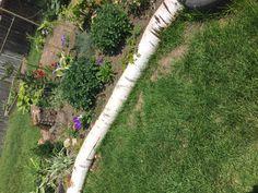 fairy garden in Bromsgrove's playground