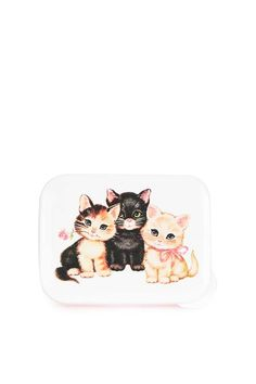 Kitten Lunch Box