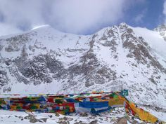 If you are planning to have 15 days: Lhasa to Kailash and Lake Manasarowar tour, then you must scrutinize the internet facility to contact the marvelous companies as they offer stupendous services in an effective and efficient manner. These organizations provide services in all 365 days, so you can contact them at any time.
