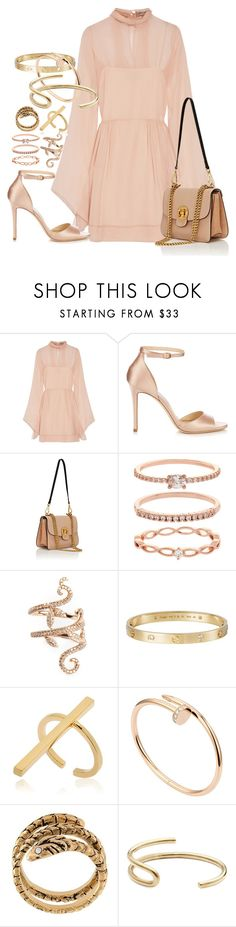 """""""Chloe x Jimmy Choo"""" by muddychip-797 ❤ liked on Polyvore featuring Emilio Pucci, Jimmy Choo, Chloé, Accessorize, Elise Dray, Cartier, Schield Collection, Yves Saint Laurent, Fay Andrada and fancy"""