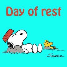 Snoopy and Woodstock like Sundays