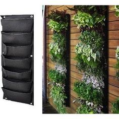 Vertical Gardens - Growing Up instead of Out | Small garden spaces ...