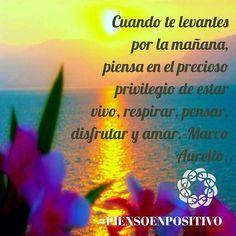 Buenos Dias Feliz Domingo...Cuando te levantes por la mañana, piensa en el precioso privilegio de estar vivo, respirar, pensar, disfrutar y amar. Marco Aurelio. • ❁ GO! NAMASTE ॐ #yopiensoenpositivo #piensoenpositivo #pienso_en_positivo  #citas #hooponopono #motivacion #emprendedores #emprende #vive #yoga #felicidad #publicidad #namaste #love #smile #happy #go  @by.piensoenpositivo . Compártela Etiqueta a Otros PIENSA EN POSITIVO VIVE EN POSITIVO