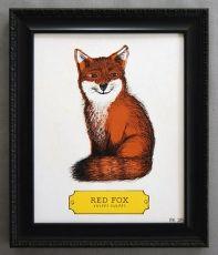 The Animal Kingdom - Fox 8x10 Print by Earmark Social Goods