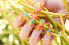 beautiful female hand with colorful spring nail art design manicure holding exotic plant