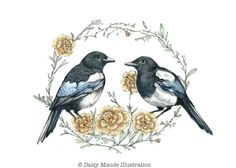 Two for joy  Magpies Birds Watercolour Painting by TheInkyDeer