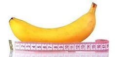 Hasil gambar untuk penis