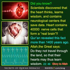 36 Ideas Quotes Faith Islam Quran For 2019 Quran Verses, Quran Quotes, Faith Quotes, Prophet Quotes, Allah Quotes, Islam And Science, Science Facts, Science Signs, Islam Hadith
