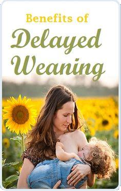 Benefits of Delayed Weaning #breastfeeding