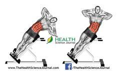 © Sasham | Dreamstime.com - Exercising for bodybuilding. Side Bend on Bench