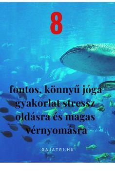 marina avsharova az ízületek és a gerinc kezelésének titkai