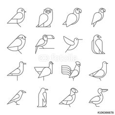 Vector: Bird icons, thin line style, flat design                              …