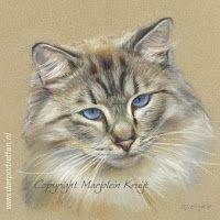 Blog - Marjolein Kruijt Animal Artist / dieren kunstenares: pastel
