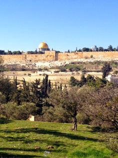 View of the Golden Gate with Temple Mount in the background from the Mount of Olives - Jerusalem