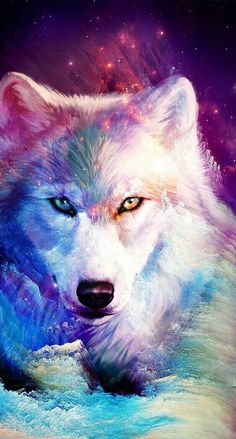 Ideas For Wallpaper Galaxy Wolf wallpaper 820710732077631336 Mythical Creatures Art, Fantasy Creatures, Fantasy Wolf, Fantasy Art, Cute Animal Drawings, Cute Drawings, Galaxy Wolf, Wolf Artwork, Wolf Painting