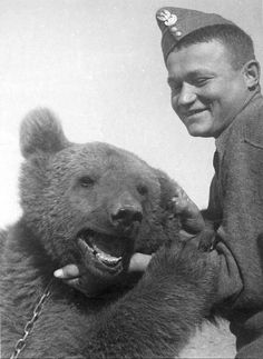 'Wojtek (1942–1963) was a Syrian brown bear cub found in Iran and adopted by soldiers of the 22nd Artillery Supply Company of the Polish II Corps. -- He enjoyed wrestling and was taught to salute when greeted. He moved with the company to Iraq and then through Syria, Palestine and Egypt. 'He was officially drafted into the Polish Army as a private. During the Battle of Monte Cassino, Wojtek helped move ammunition. -- 'Following demobilization on November 15, 1947, Wojtek was given to the…