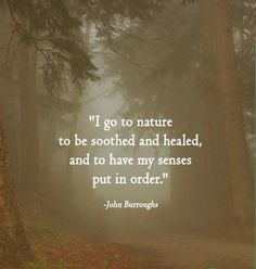 I go to nature to have my senses put in order.
