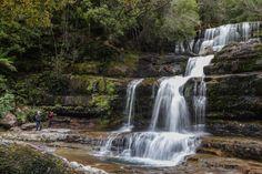 Concrete Path, Gravel Path, Mountain Bike Trails, Hiking Trails, Waterfall Hikes, Running Horses, Winding Road, Grade 2, Tasmania