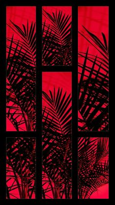 Ideas wallpaper backgrounds aesthetic pastel red for 2019 Red And Black Wallpaper, Black Wallpaper Iphone, Iphone Wallpaper Tumblr Aesthetic, Black Aesthetic Wallpaper, Red Wallpaper, Aesthetic Backgrounds, Wallpaper Backgrounds, Aesthetic Wallpapers, Unicorn Backgrounds