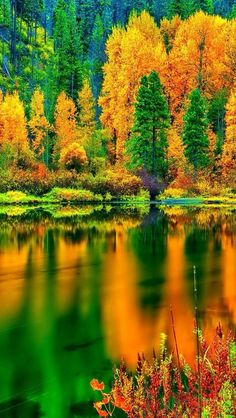 Beautiful Pictures Amazing Autumn Reflection