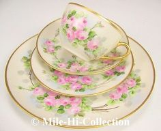 LIMOGES-FRANCE-HAND-PAINTED-ROSES-CUP-SAUCER-DESERT-DINNER-PLATE-SETTING-A